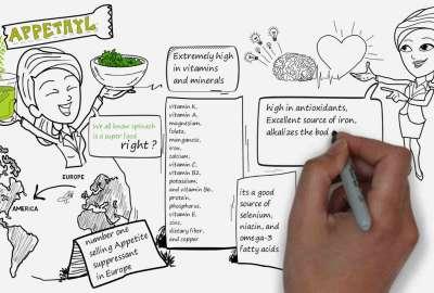 Whiteboard Animation – Berry Media
